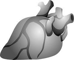 bien vieillir malgré une insuffisance cardiaque