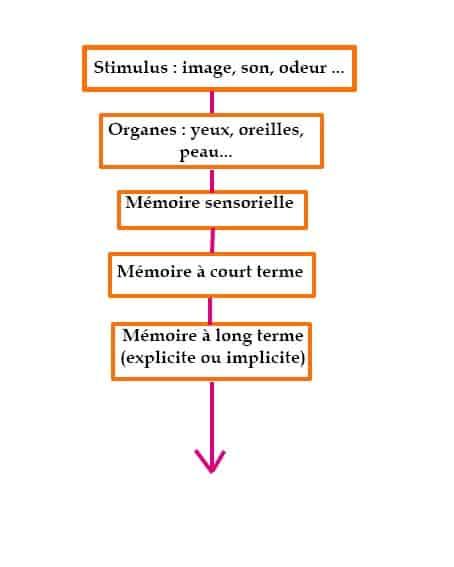 Mémorisation d'une information